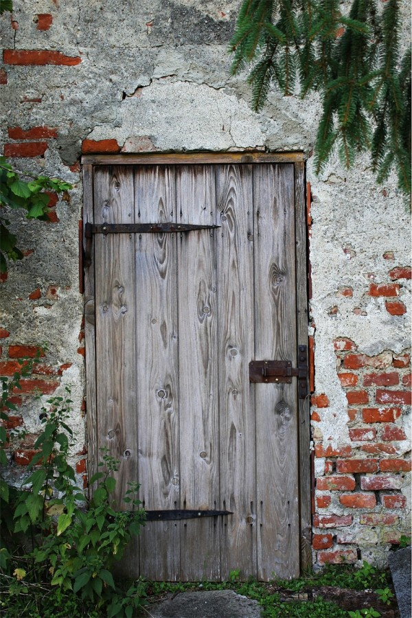 wooden door surrounded by brick and plants growing over it; symbol for love never spoken of