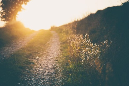 archetypal-path