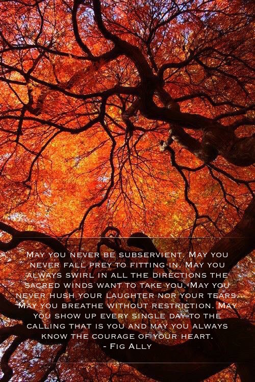 photo of red leafed tree with quote over the top