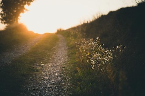 bright-walk