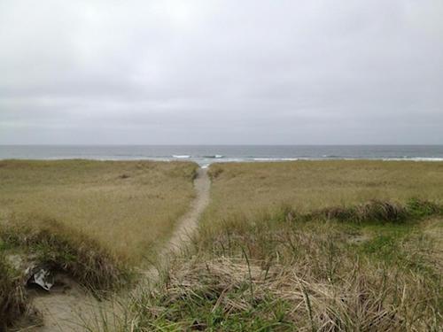 grayland-beach